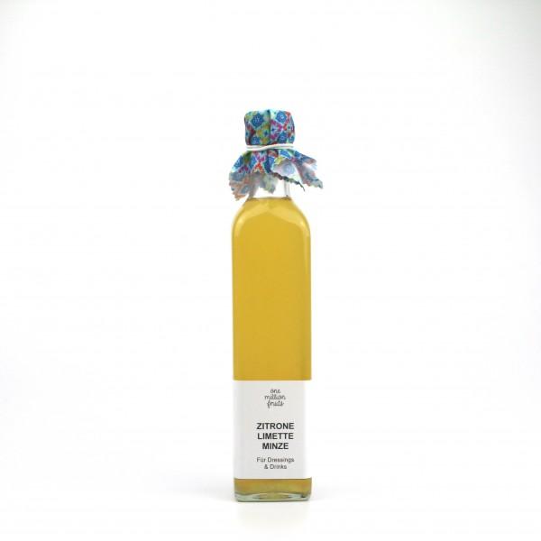 Essigzubereitung mit Zitrone, Limette & Minze